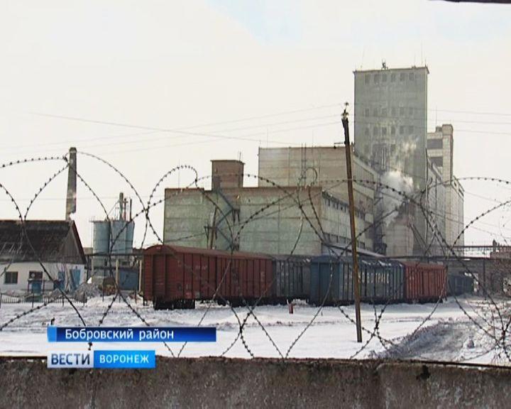 Жители Боброва обвиняют местный завод по производству круп в появлении «чёрного снега»