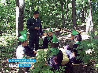 Новая экологическая тропа появится в Калачеевском районе
