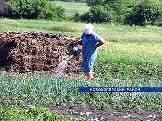 Новохоперские пенсионеры решили поддержать развитие сельского хозяйства
