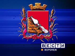 Новый герб Воронежа представлен на рассмотрение Гордумы