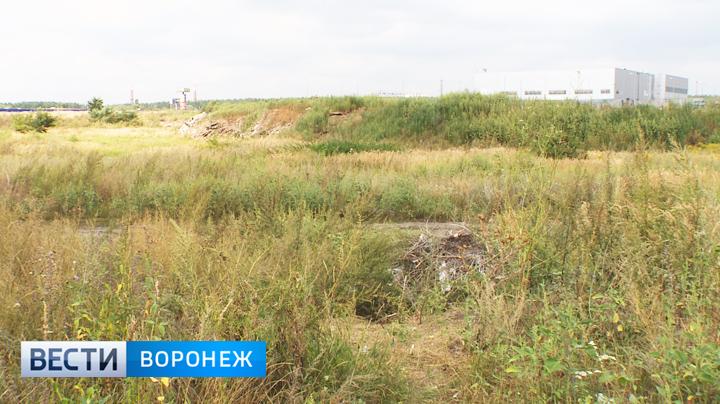 В Воронеже наглядно проиллюстрировали, почему в России нет футбола