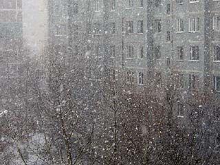 Обильный снегопад внес коррективы в работу воронежского аэропорта
