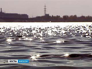 Областные экологи не оставляют надежду преобразовать Воронежское водохранилище