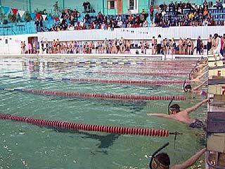 Областные соревнования по подводному плаванию завершились в Воронеже
