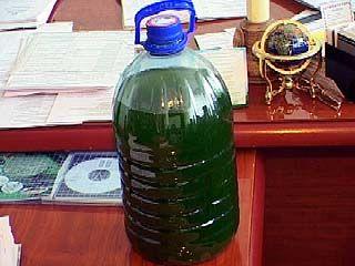 Очистить Воронежское водохранилище помогут водоросли