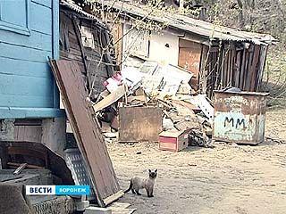 Одна из управляющих компаний Воронежа отказалась вывозить мусор, собранный на субботнике