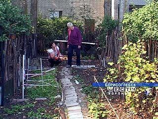 Огород под окнами многоэтажки - ответ кризису от пенсионеров