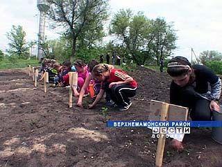 Ольховатские школьники создали Учительский парк