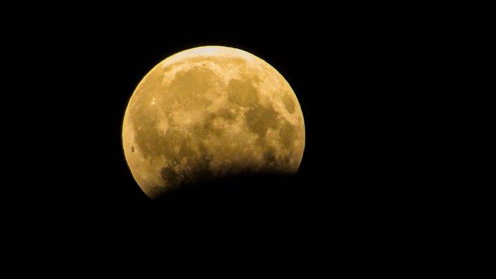 «Через подзорную трубу видно шикарно». Как воронежцы любовались лунным затмением