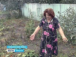 Осадки в деревне Чудовка Семилукского района выпали в виде химикатов