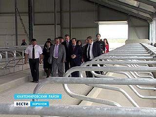 Осенью в Кантемировском районе откроется новый молочный комплекс