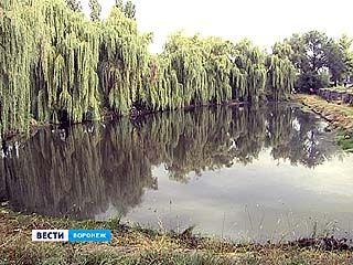 Озеро на Новосибирской станет глубже