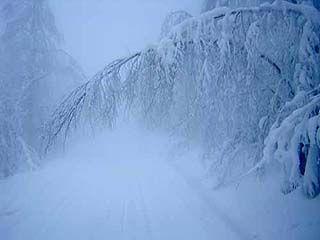 Ожидается сильный снег и понижение температуры