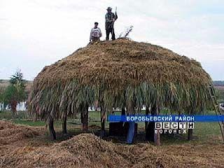 Памятник соломенной крыше появится в Воробьевском районе