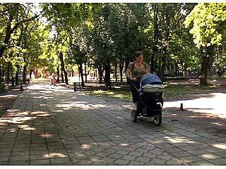 Парки и скверы Воронежа подлежат инвентаризации
