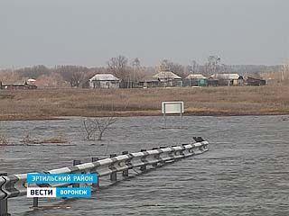 Паводок нарушил привычную жизнь жителей двух сел Гороховка и Старый Эртиль