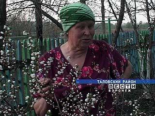 Пенсионеры Тереховы взяли шефство над поселком Богатырь