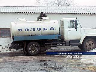 Перекупщики молока задолжали терновским животноводам 2 миллиона рублей