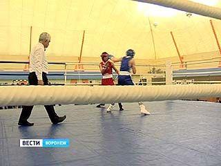 Первенство округа по боксу среди юношей финишировало в Воронеже