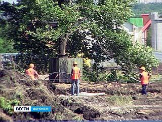 Питомник в районе Шишкова застраивают многоэтажками