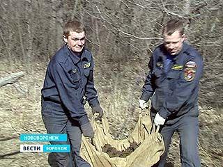Под Нововоронежем обнаружен схрон боеприпасов времен ВОВ