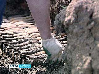 Под Воронежем уничтожены схроны мин и артиллерийских снарядов чёрных копателей