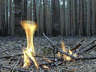 Подведены промежуточные итоги работы по устранению последствий пожаров