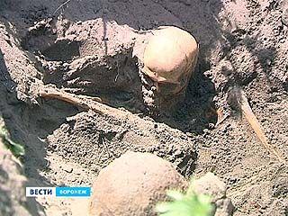 Поисковики приступили к работам на Московском проспекте в районе яблоневого сада