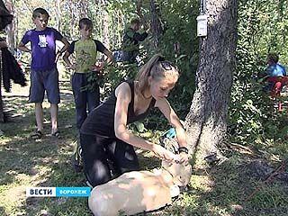 Поисково-спасательную операцию под Воронежем провели школьники