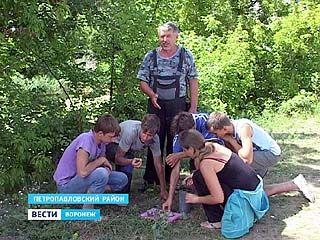 Полевой лагерь краеведов обнаружил на берегу Толучеевки несколько ценных находок