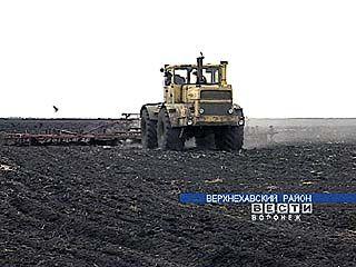 Посевная в Воронежской области не прекращалась и в праздники
