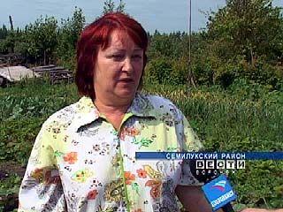 Посреди дачного поселка Стрелица ведется химическое производство