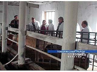 Поворинский район в экономическом соревновании занял 19 место в области