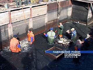 Правительство Воронежской области поддержит рыбоводство