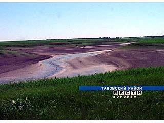Предприниматель Таловского района уничтожил озеро