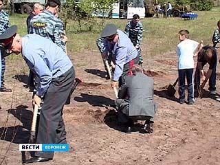 Представители воронежской полиции озеленяли Масловку