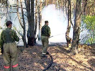 Продолжается ликвидация пожара в поселке Никольское