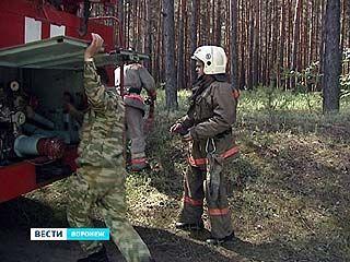 Профессиональные пожарные учили бороться лесников с огнем