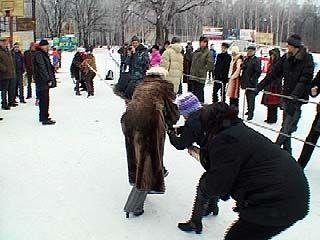 Профсоюзные работники организовали спортивный праздник в Воронеже