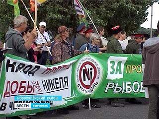 Противники добычи никеля вновь объявили сбор подписей за запрет разработок