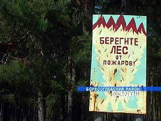 Противопожарный карантин введен в Воронежской области