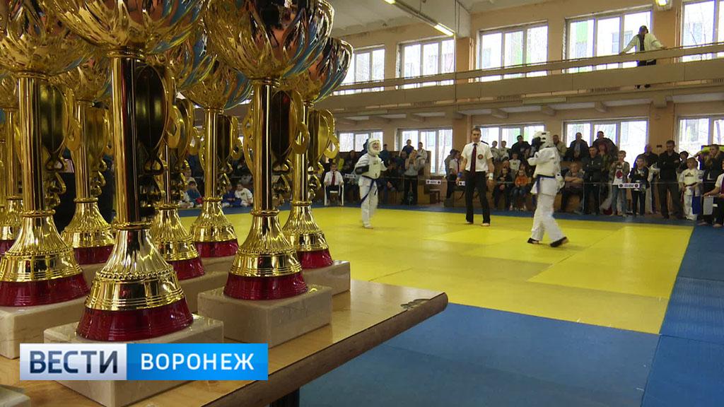 Юные воронежцы собрали почти всё «золото» на турнире по «яростному карате»