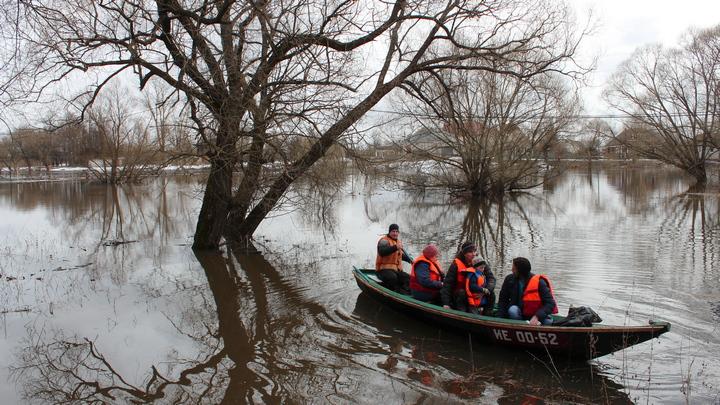 В Воронежской области из-за затопления моста организовали лодочную переправу