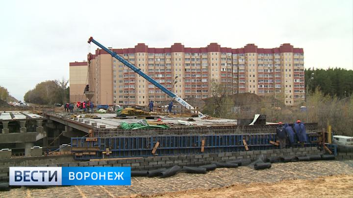 Путепровод на улице 9 Января в Воронеже откроют для пешеходов 14 декабря