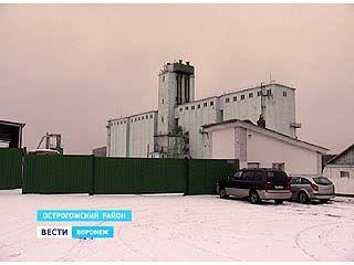 Работники прежнего Острогожского мелькомбината четвёртый месяц остаются без зарплаты