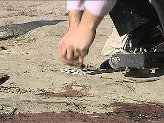 Расследование инцидента о покушении на бизнесмена в Рамонском районе завершено