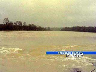 Река Воронеж скоро станет экологически чистой
