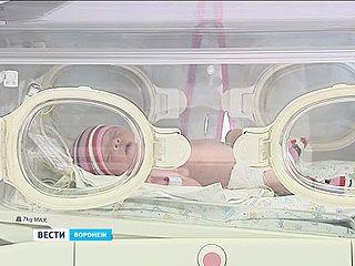 """Роддом больницы """"Электроника"""" отмечает 20-летний юбилей"""