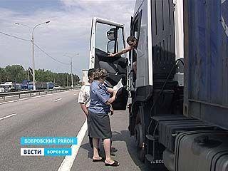Россельхознадзор снова на посту - вместе с сотрудниками ГИБДД тормозят зерновозы