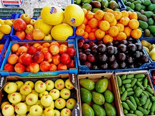 Россельхознадзор запретил ввоз через Белоруссию продуктов из Туниса